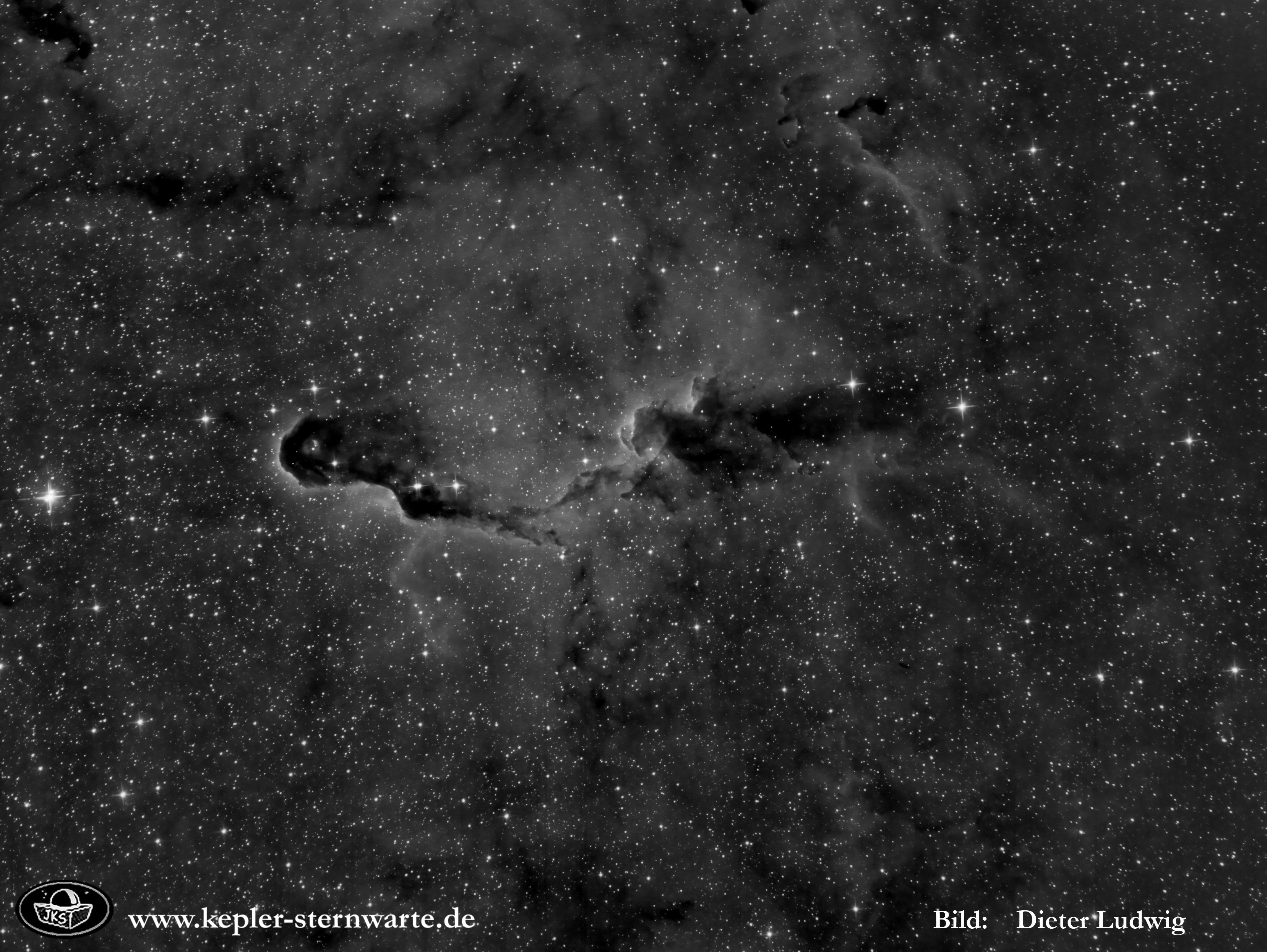 IC1396 HA crop tx
